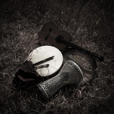 アイルランド音楽の民族楽器